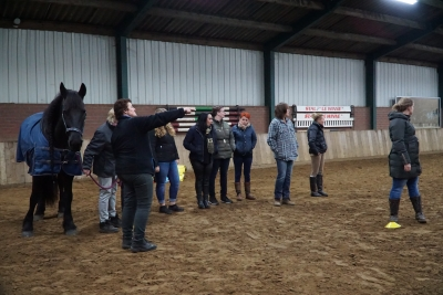 Carin Camp coaching met PaardenKracht